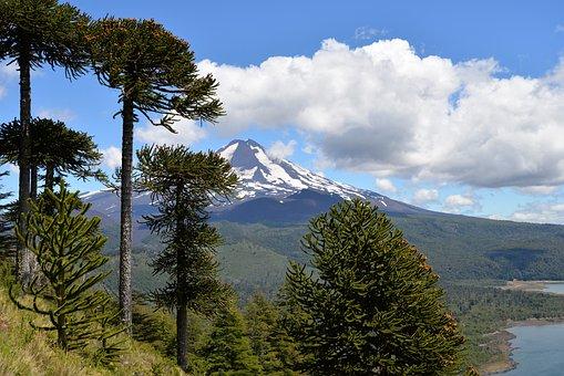 Parque Nacional Conguillío Volcán Cielo Nu