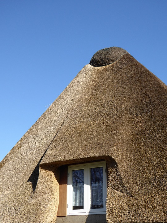 Thatched Roof, Reed, Roof, Home, Window