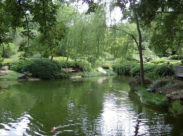 Free Photo Pond Botanic Gardens Fort Worth Free Image On Pixabay 713763