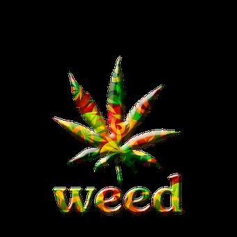 Marijuana Leaf Bright Graphic Marijua