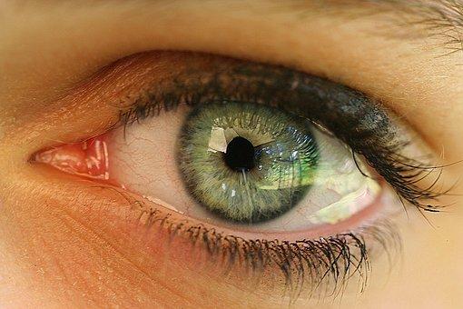 Eye, Human, Face, Girl, Eyelashes, Iris