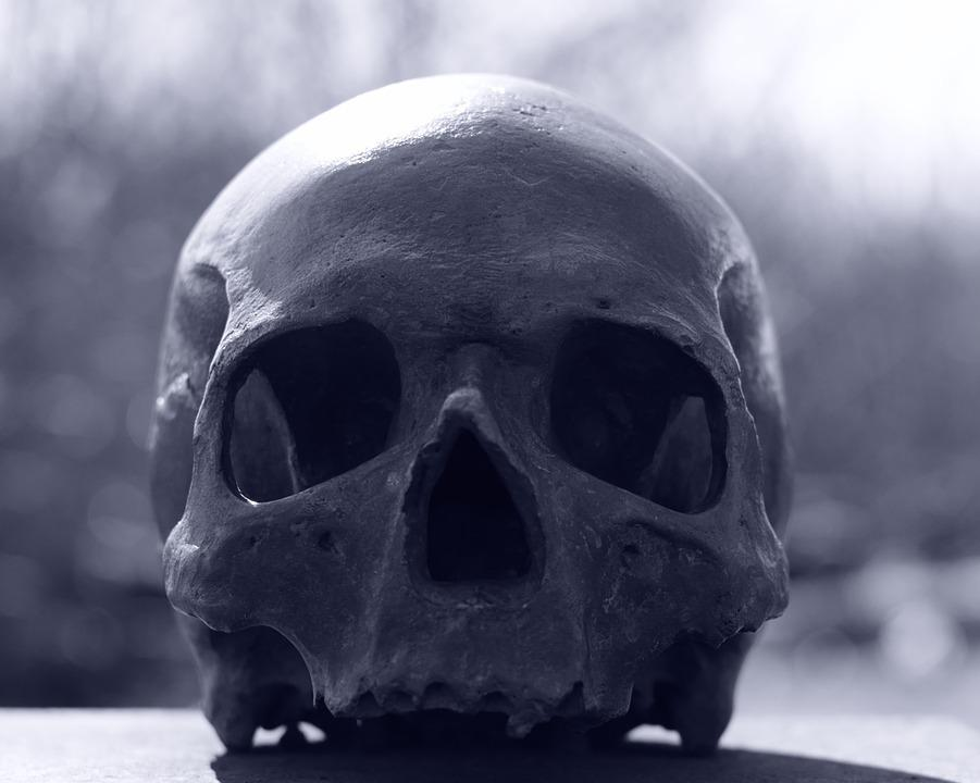 Free photo: Skull And Crossbones, Skull, Human - Free ...