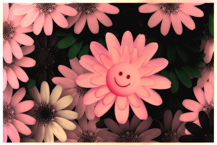 вот первой цветочки с улыбкой картинки вас говорит ваша