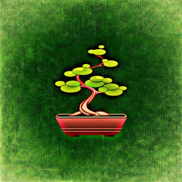 gratis illustration bonsai tr b umchen lille gr n. Black Bedroom Furniture Sets. Home Design Ideas