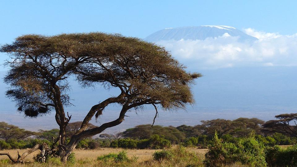 hiking & trekking in Africa