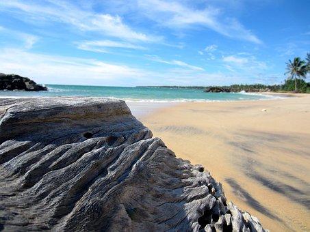 Sri Lanka, Beach, Legno, Sabbia, Ocean