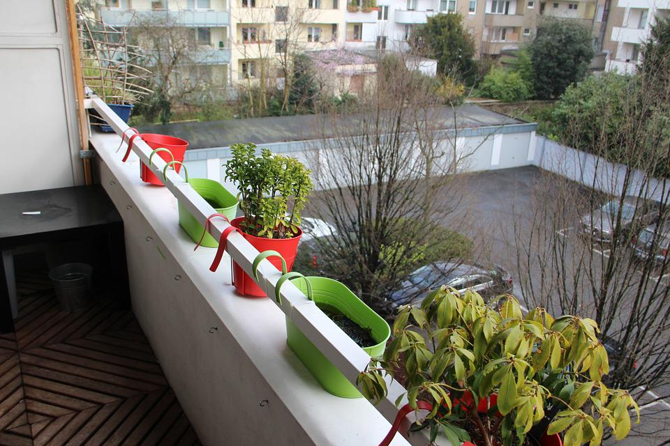 Balkon Blumentopf Blume Kostenloses Foto Auf Pixabay