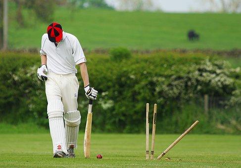Cricket, Stumps, Ball, Sport, Match