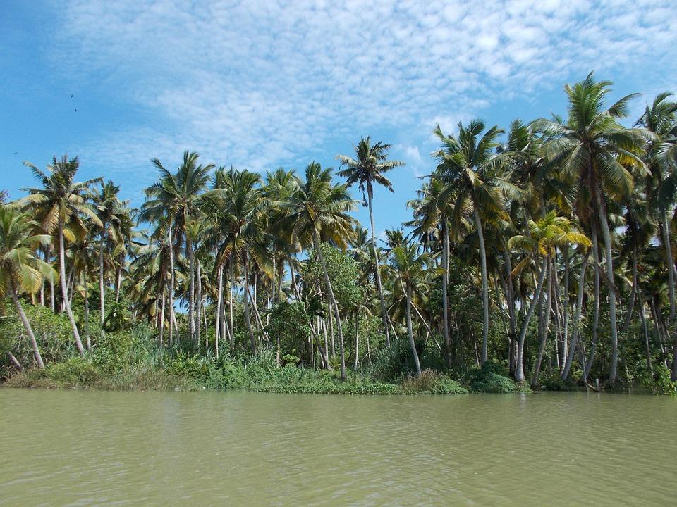 Backwaters Trivandrum