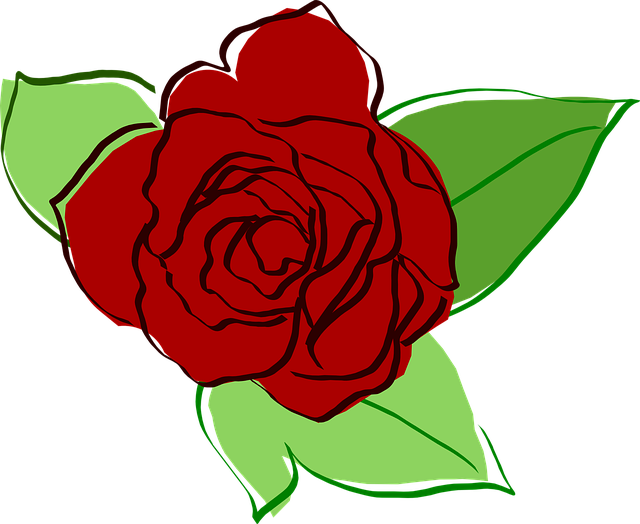 Free Vector Graphic: Rose, Red Rose, Flower, Flora