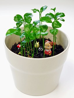 Figurine, Pot, Plant, Decorative, Green