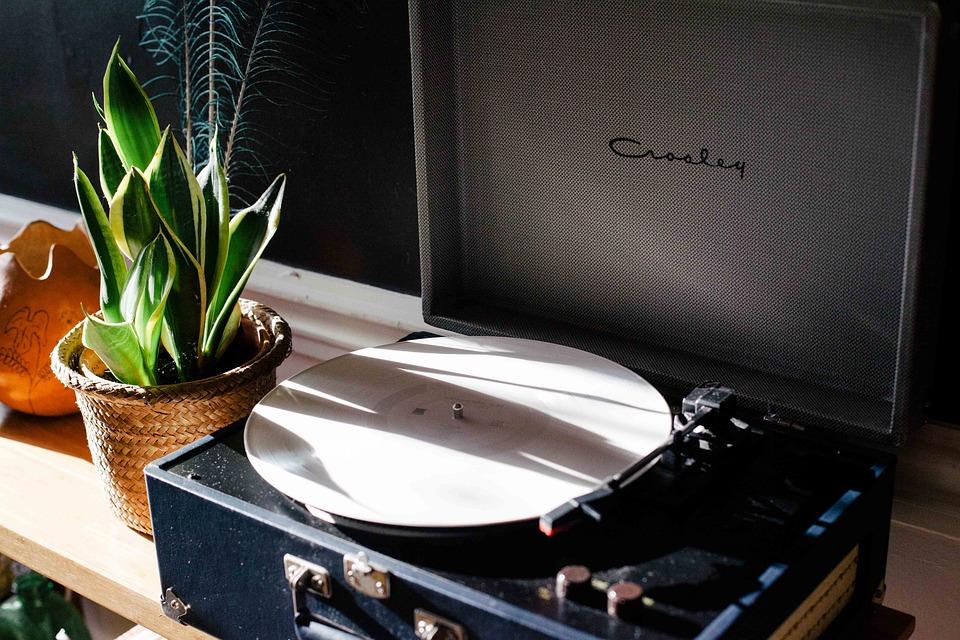 レトロ, ビンテージ, レコード, プレーヤー, ケース, モバイル, ポータブル, 鉢植え, 植物, 静物