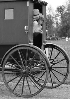 Amish Indiana Buggy Farmland Transportatio