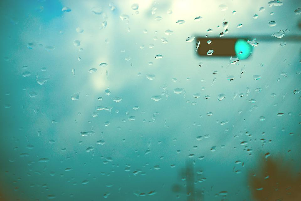 Tabitha, Raindrops, Non, The Traffic Light, Window