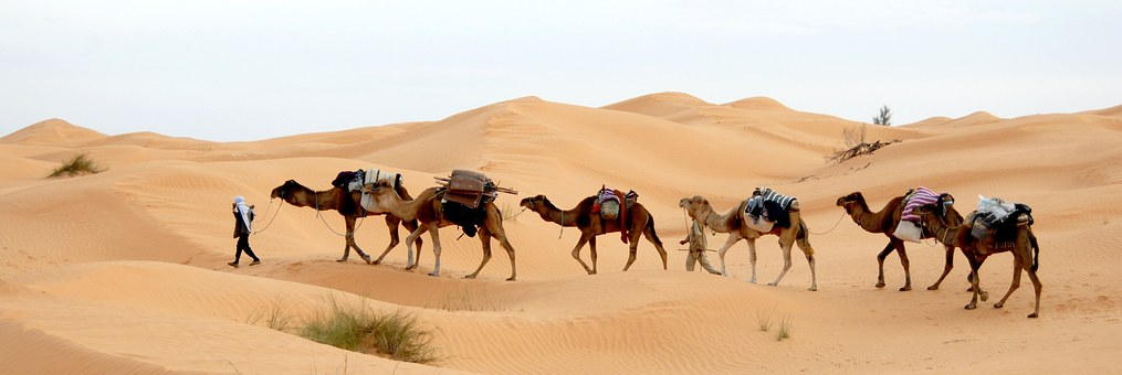 Nomads in Desert