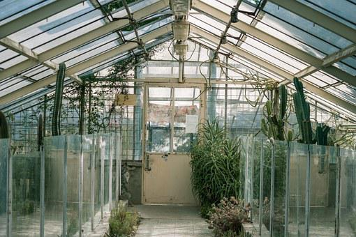 Glasshouse, Greenhouse, Green, Grow