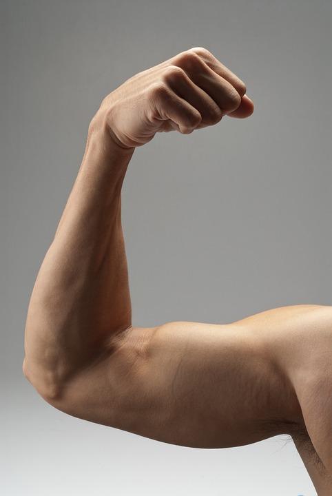 Arm Muskel Starke · Kostenloses Foto auf Pixabay
