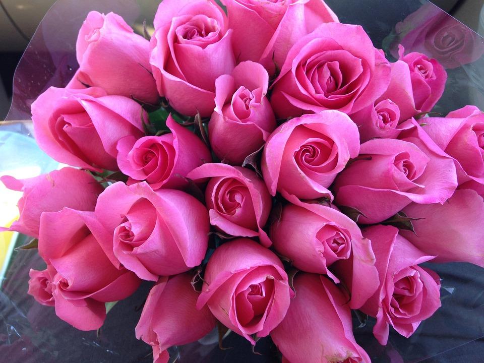 Pixabay 737241 - Bouquet de roses signification ...