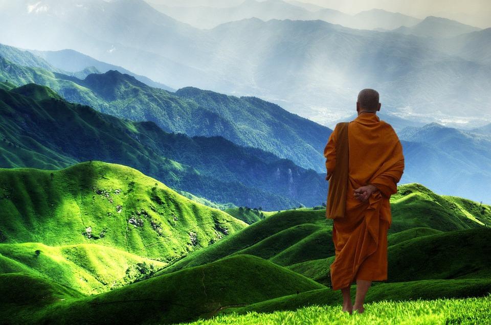 himalayas,grass,