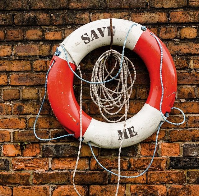 Life Saving Swimming T...