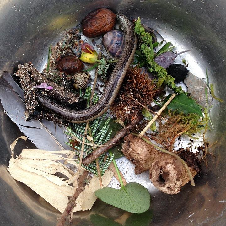 Photo gratuite sorci re potion chaudron image - Jeux de sorciere potion magique gratuit ...