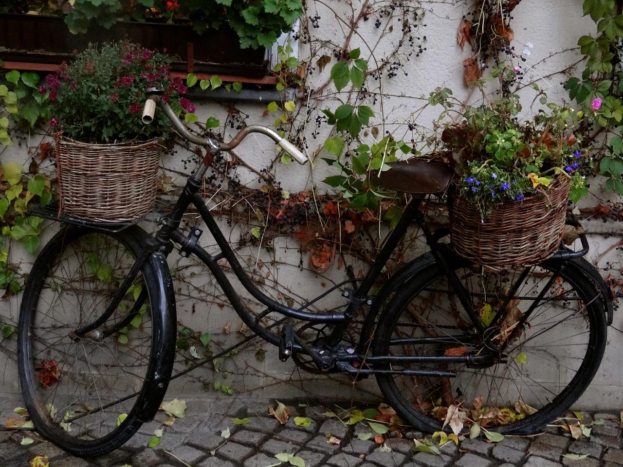 типовом ретро велосипед фото видим
