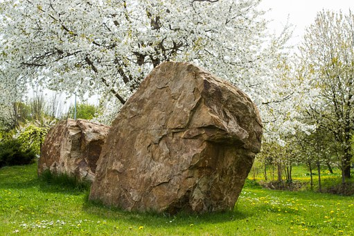 Spring, Flowers, Stone, Still Life