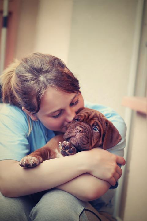 Are You Spoiling Your Dog With Too Much Love?