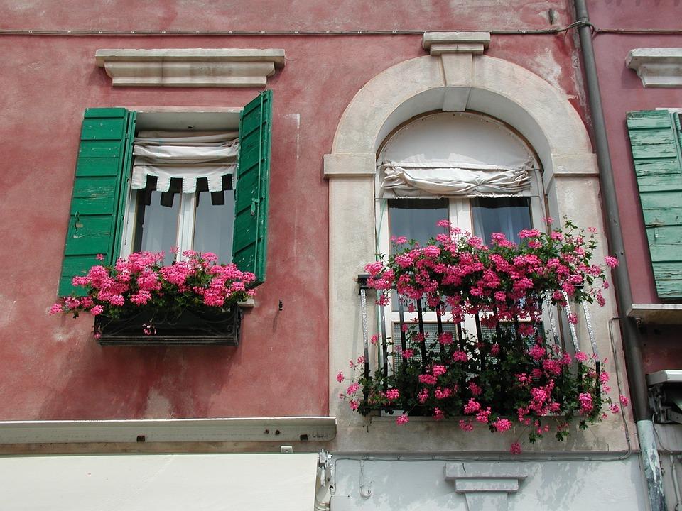 ファサード, 花, 建物, フラワーボックス, ウィンドウ