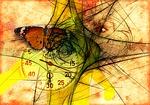 butterfly, stopwatch, eye