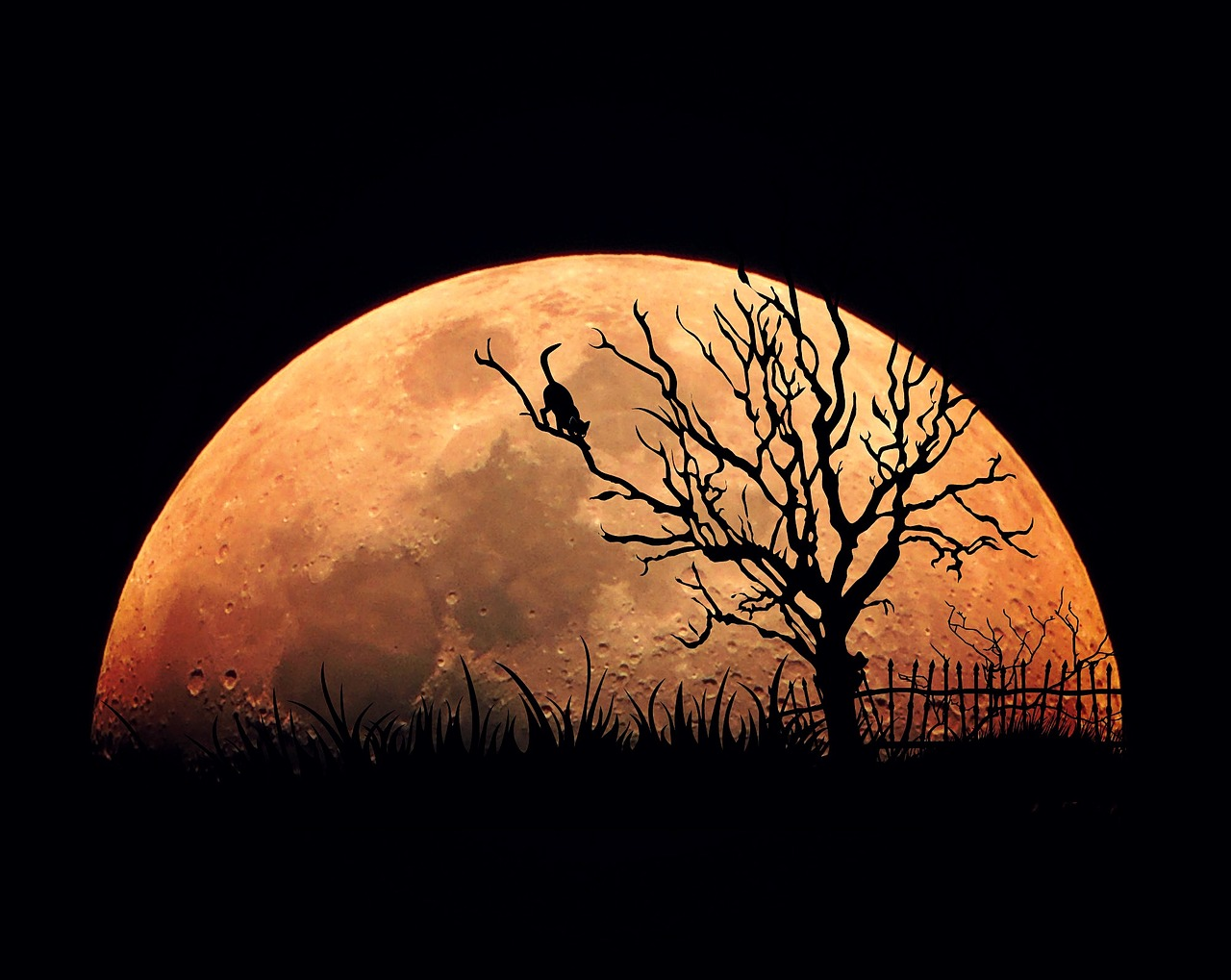 sergey lipach twilight magic