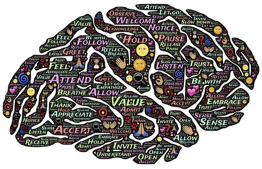 Brain Mind Presence Mindset Mindfulness Me