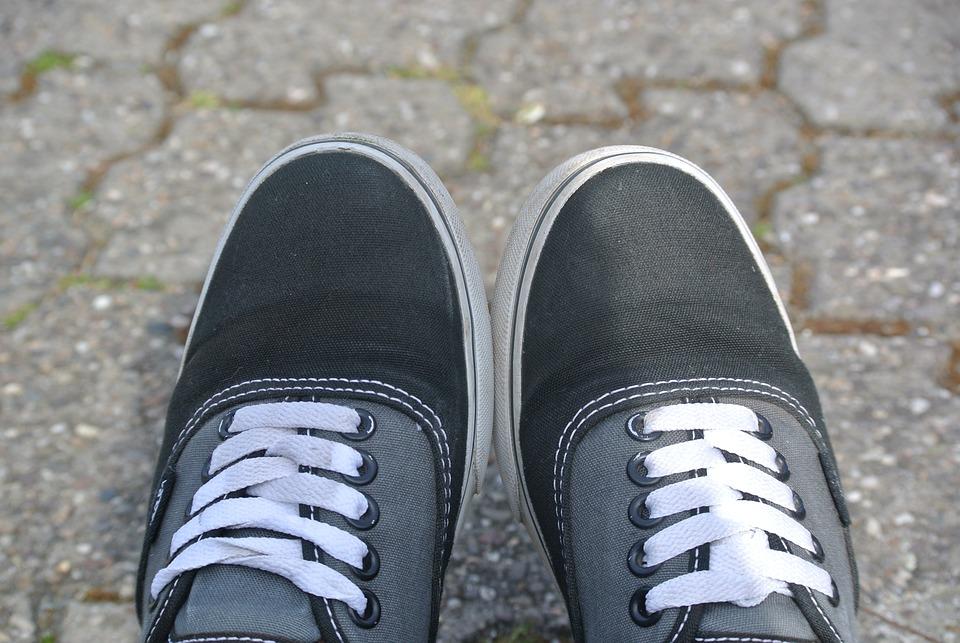 zapatillas vans de invierno