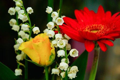 Bouquet Fleurs Rose Marguerite Lys De La V