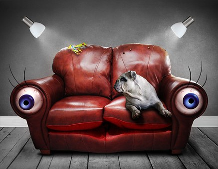 Sofa, Couch, Surreal, Eyes, Dog, Art