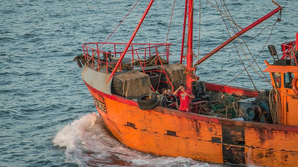 Free photo: Fishing, Mar Del Plata, Sea, Boat