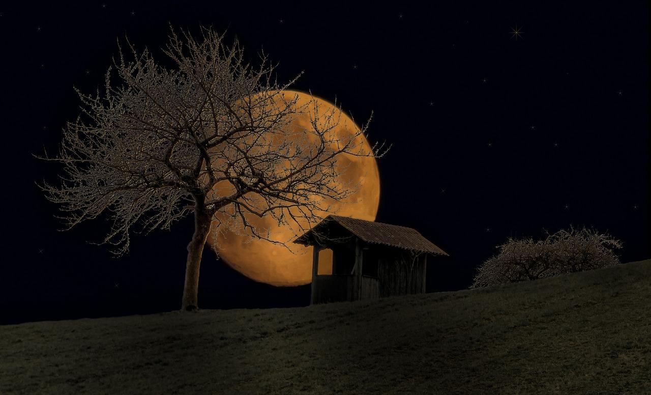 неожиданно естественное фото ночной луны понятно