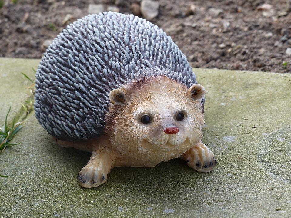 free photo: hedgehog, stone tiles, garden - free image on pixabay