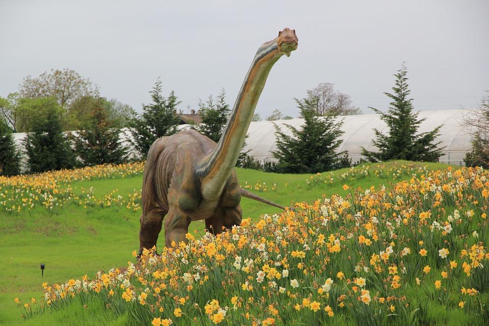 Dinosaure jurassic park champ de photo gratuite sur pixabay - Telecharger jurassic park 4 ...