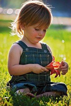 适合1-2岁宝宝,智力训练的亲子游戏