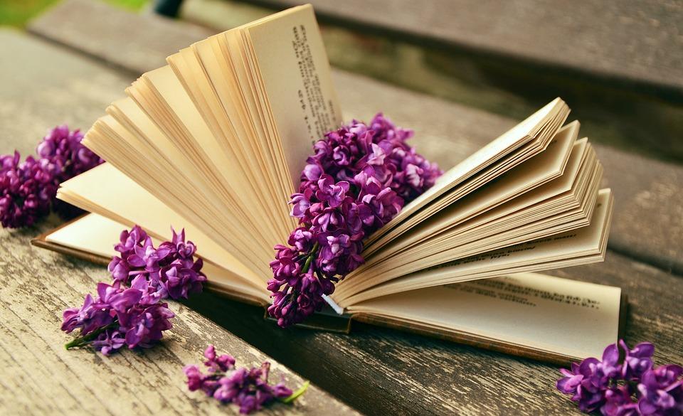 Kniha, Čtení, Klídek, Šeřík, Banky, Starý