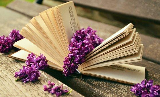 Buch, Lesen, Entspannen, Flieder, Bank