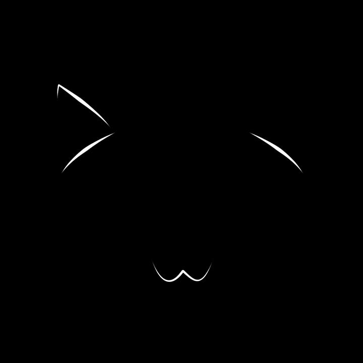 gato felino rosto imagens grátis no pixabay