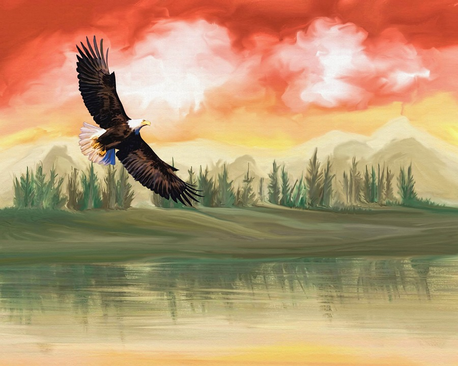 Seni Digital Lukisan Elang Gambar Gratis Di Pixabay