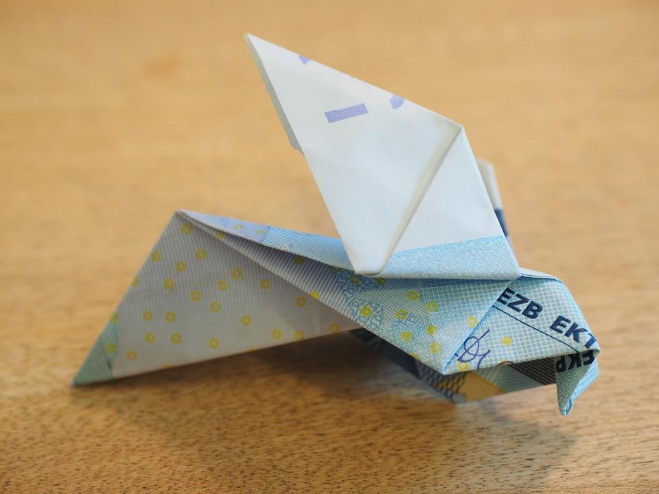 folde pengesedler fugl