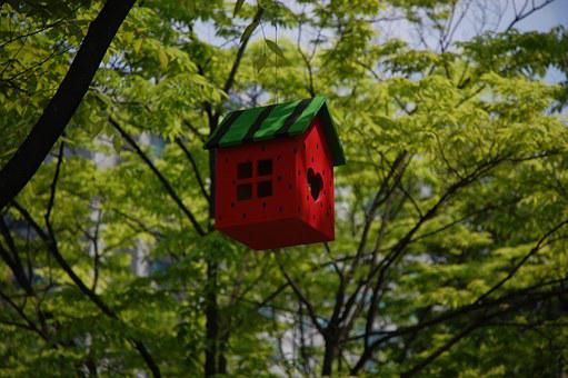 A red and green bird cage hanging in a tree so signigy niche