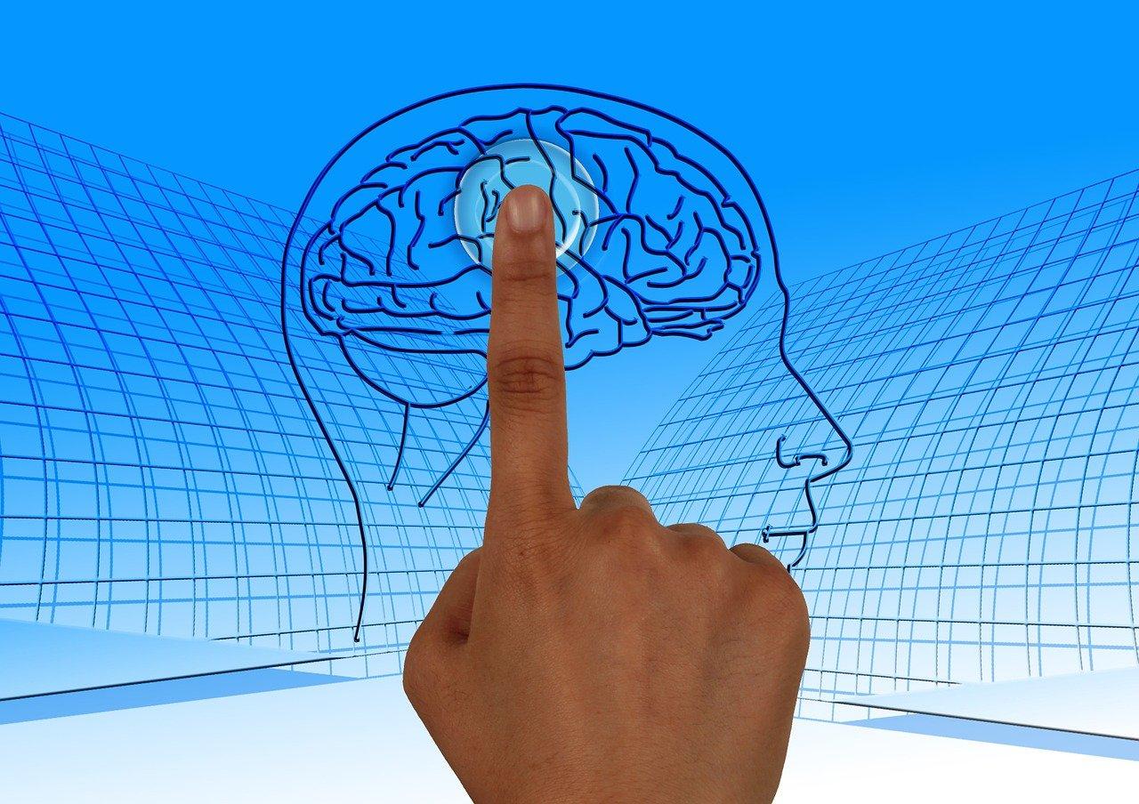 脳, 電源を入れます, 教育, 読み取り, 本, 学校, 学ぶ, 思う, 反映, 裁判官, リコール, 心配