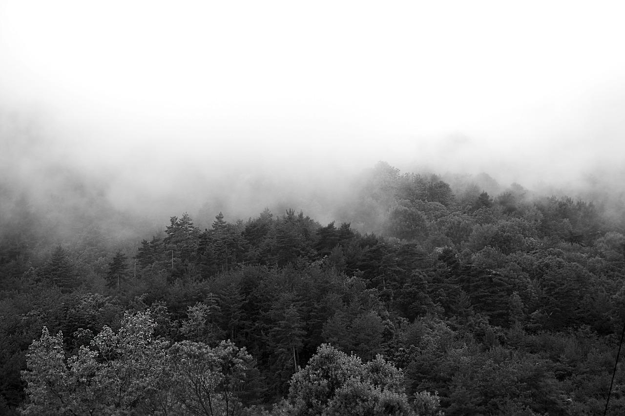 черный туман картинки самый удивительный