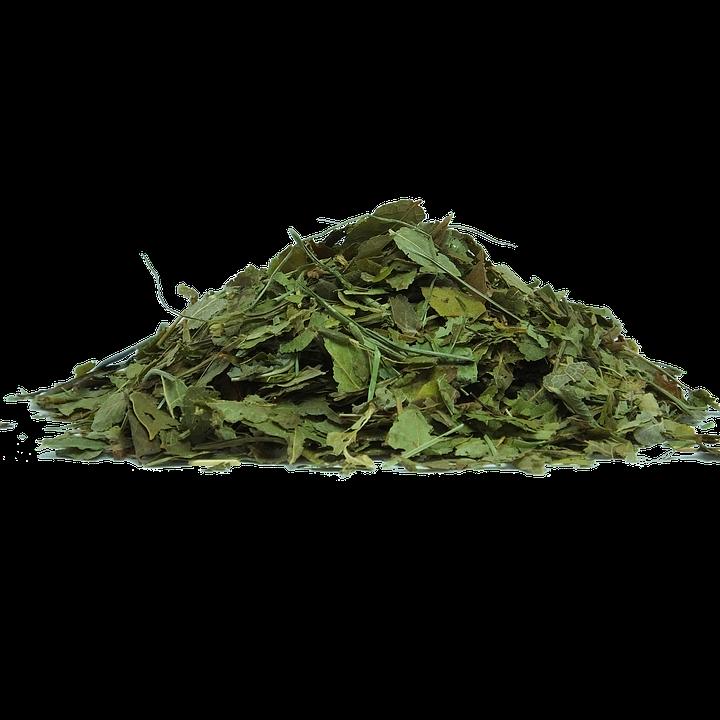 Bilberry Leaf Herbs · Free image on Pixabay