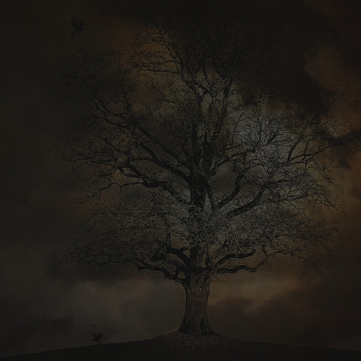 spooky halloween scary mystery dark night evil - Free Scary Halloween Images